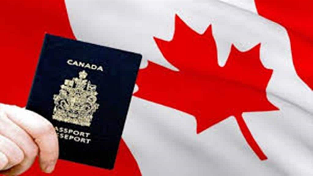 Processing times for work permits can vary greatly depending on where they are submitted and the type of application. Applications submitted inside of Canada